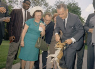 LBJ pulls dogs ears animal abuse