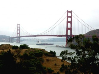 SCHULTZ'S GUIDE TO ENJOYING SAN FRANCISCO