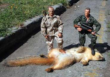 squirrelkill