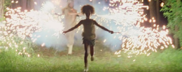 Beasts of the southern wild fireworks