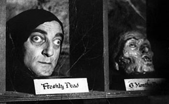 Young Frankenstein Ruthless Reviews