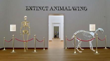 extinctmuseum630_0